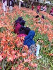Empuk mungkin ya duduk di bunga